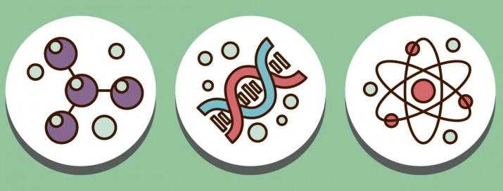 cabecera blog adn