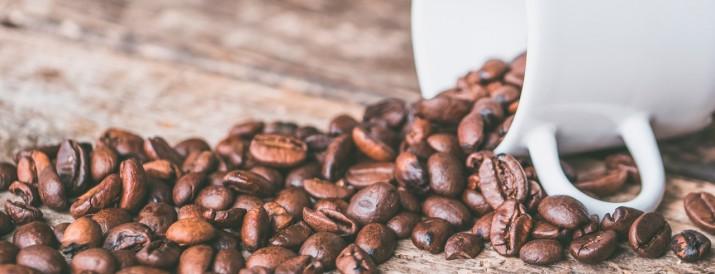 cafeina en el cuerpo - cabecera
