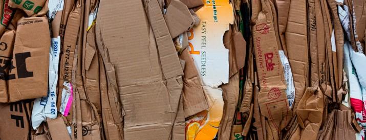 Proyectos reciclaje niños