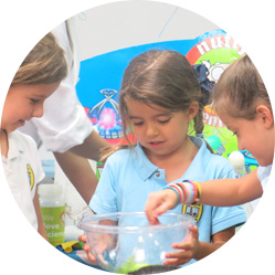 Nutty Scientists After School Programs